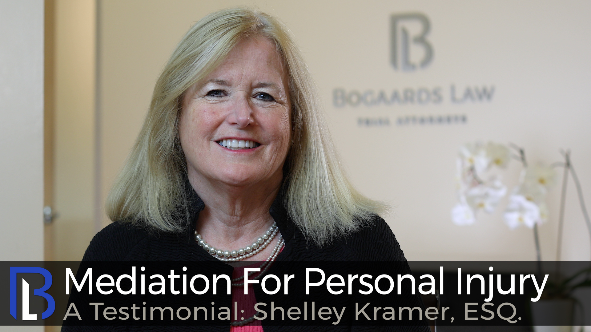 Mediation For Personal Injury--A Testimonial: Shelley Kramer, ESQ